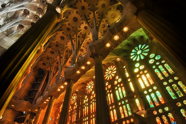The Cathedral Shines