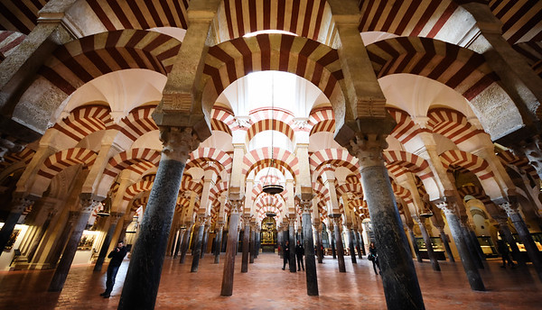 The Mezquita Forest