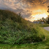 Grassy Hill Sunset