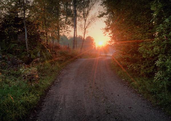 A Lost Dirt Road