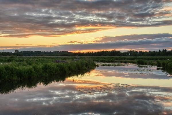 Wetlands of Golden Clouds