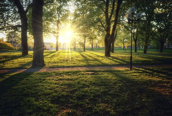 Sunbeam Shadow Park