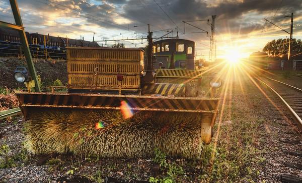 Railroad Brush Sunset