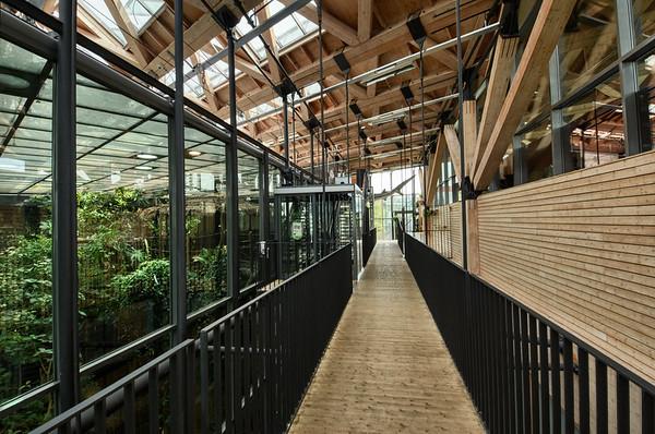 A Tropical Corridor