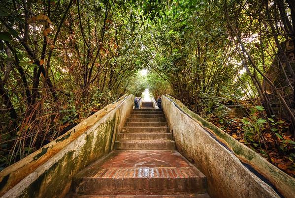 Alhambra Garden Steps I