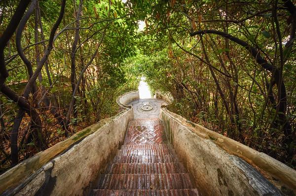 Alhambra Garden Steps II