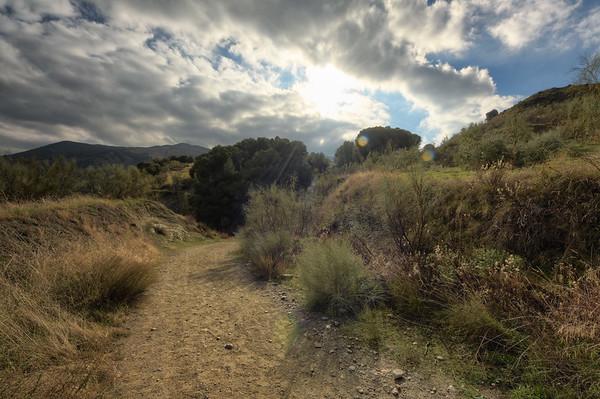 Early Mountain Walk