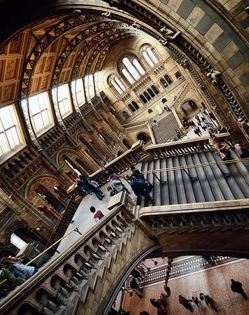 The Museum Floors