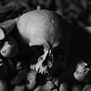 Skulls of the Catacombs II
