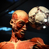 Soccer Corpse