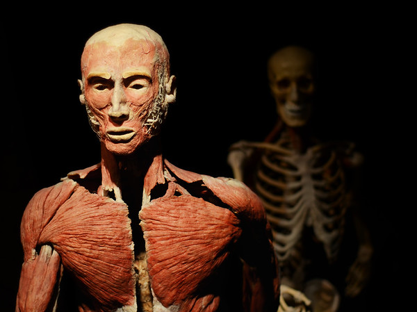 Skeleton Chase