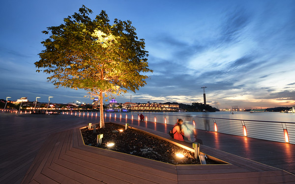 Tree of Sentosa Boardwalk
