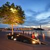 Tree of Sentosa Boardwalk