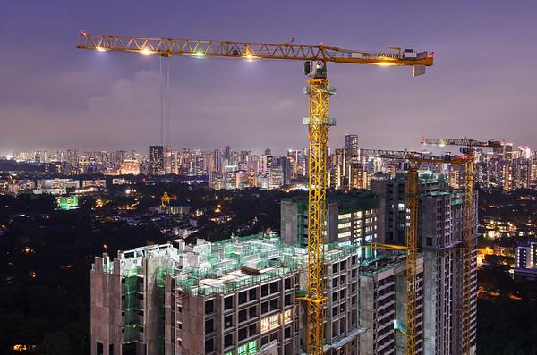A Crane of Queenstown