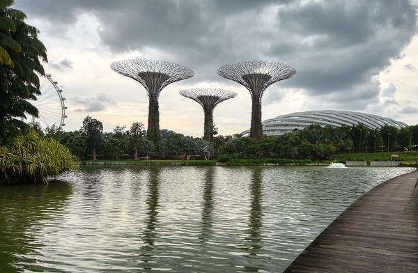 Silver Garden Trees II