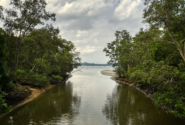 Across Tampines River