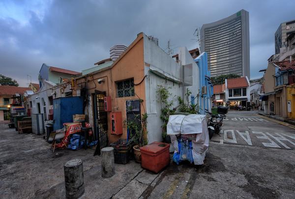 Among Decrepit Homes