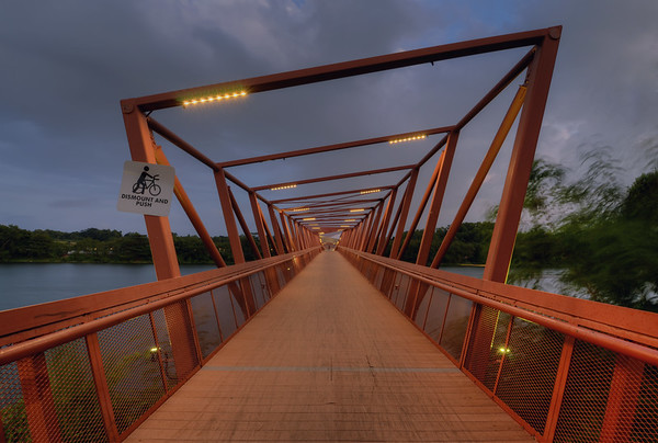 Lorong Halus Bridge I