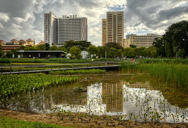 Garden of Bishan Park