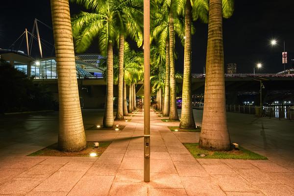 The Urban Trees