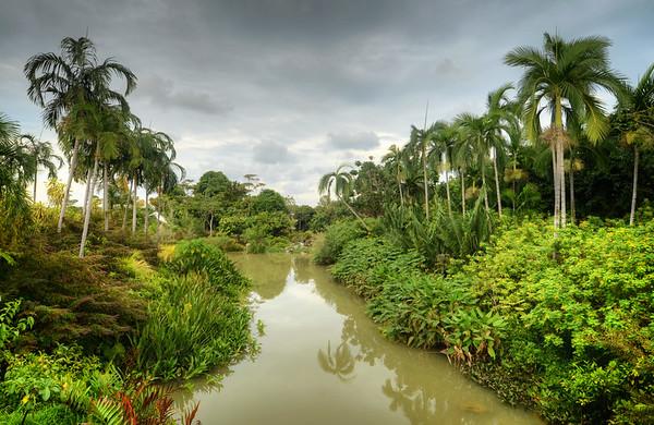 Muddy Water Lands