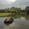 Chinese Garden Rock