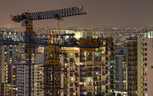 Cranes Rise Night