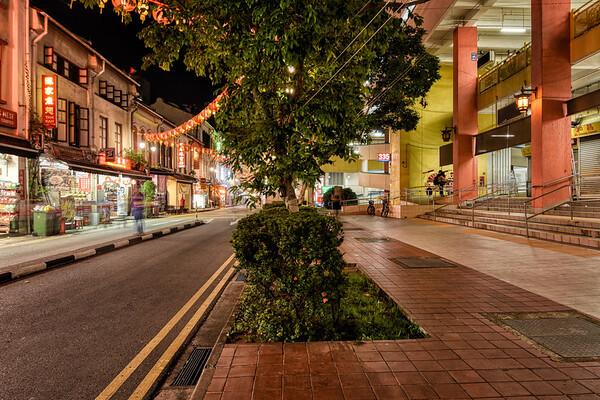 Trees of Smith Street