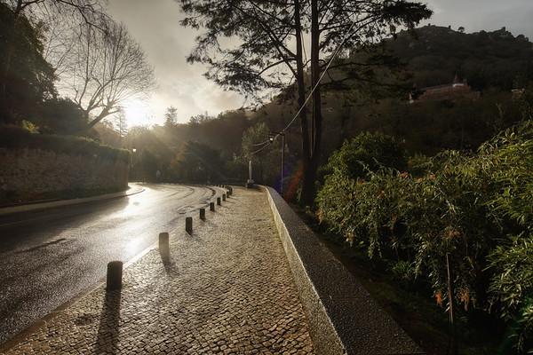 Morning in Sintra