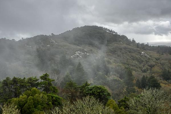 Mist of Sintra Hills