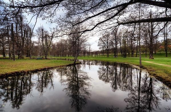 English Park Pond