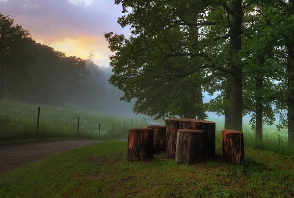 Sunset Through Fog III