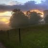 Sunset Through Fog II