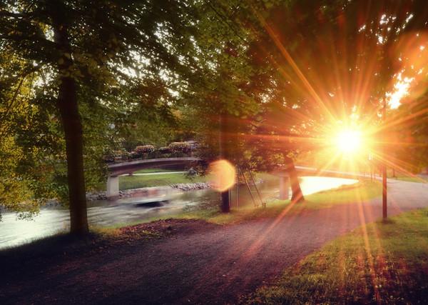 Sun Burst Park