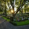 A Cemetery Evening