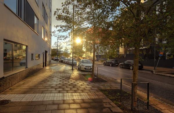 Annedal Street Sunset