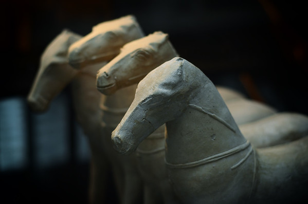 The Ancient Horses