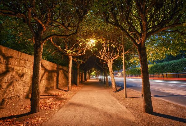 A Cemetery Avenue