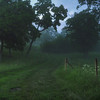 A Misty Path