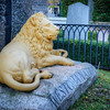 Golden Lion Tomb