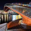 Calatrava Bridge Night
