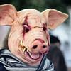 A Zombie Pig