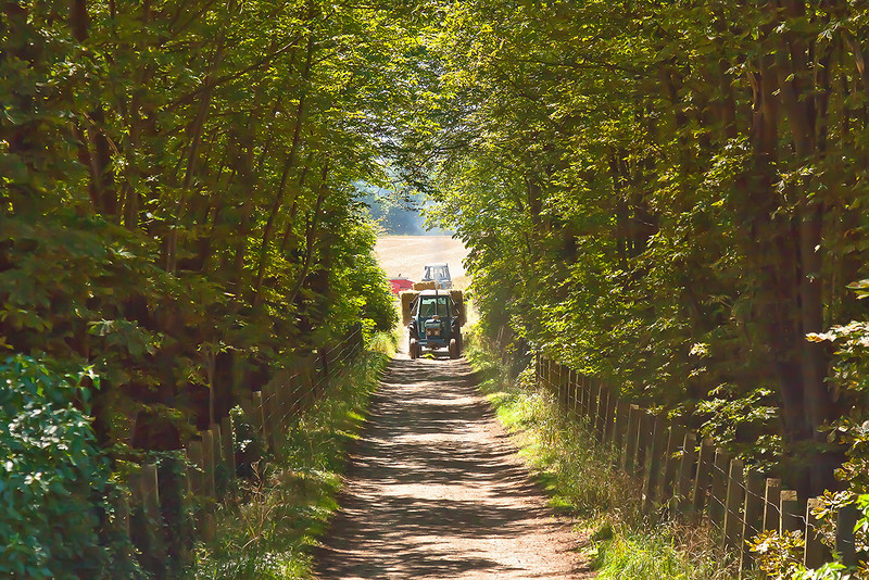 24th Jul 12:  Tractor moving hay on Manor Farm in Cholsey
