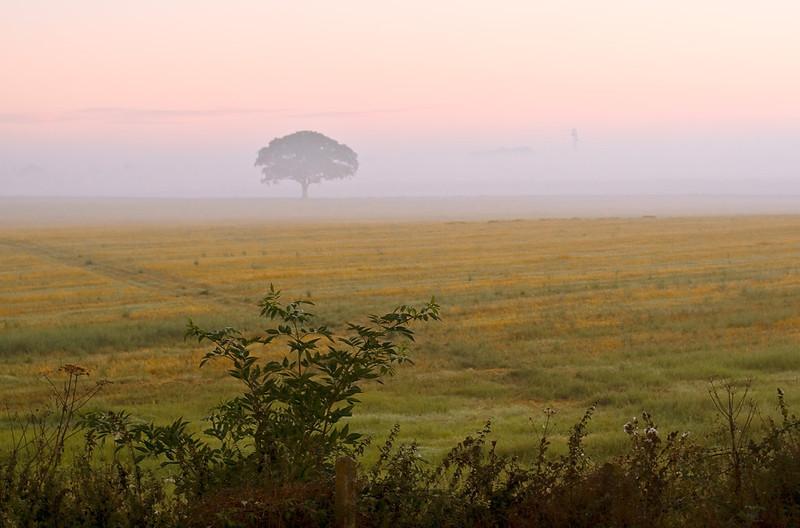 25th Aug 07::  6 am dawn at Shottesbrooke.  Looking North East