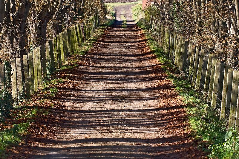 9th Oct 8: Shadows, Manor Farm bridge, Cholsey