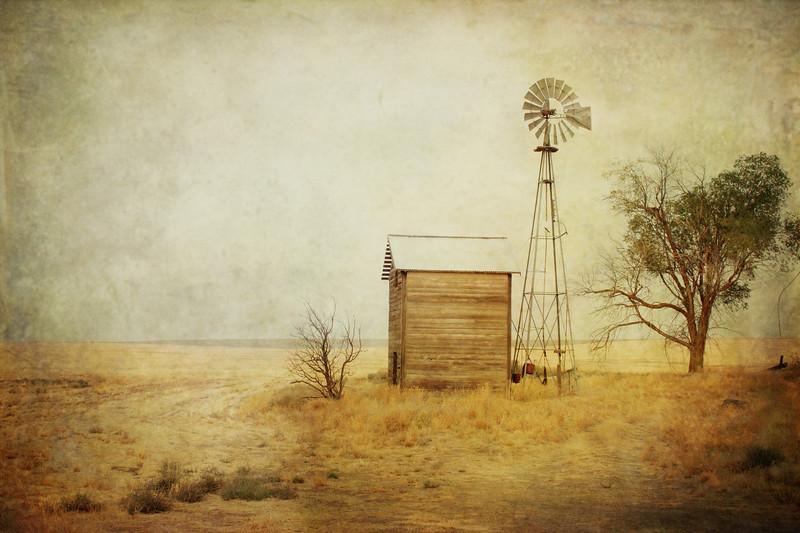 windmillshead copy