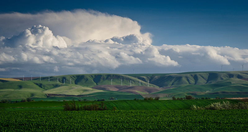 Windmills 23A