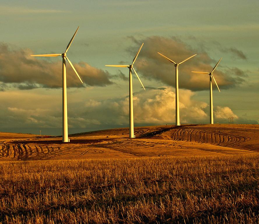 Windmills1Z