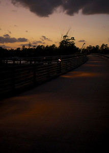 Lake Woodlands Parkway Bridge, circles of light