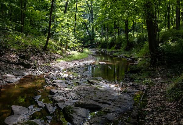 Fiddler's Creek